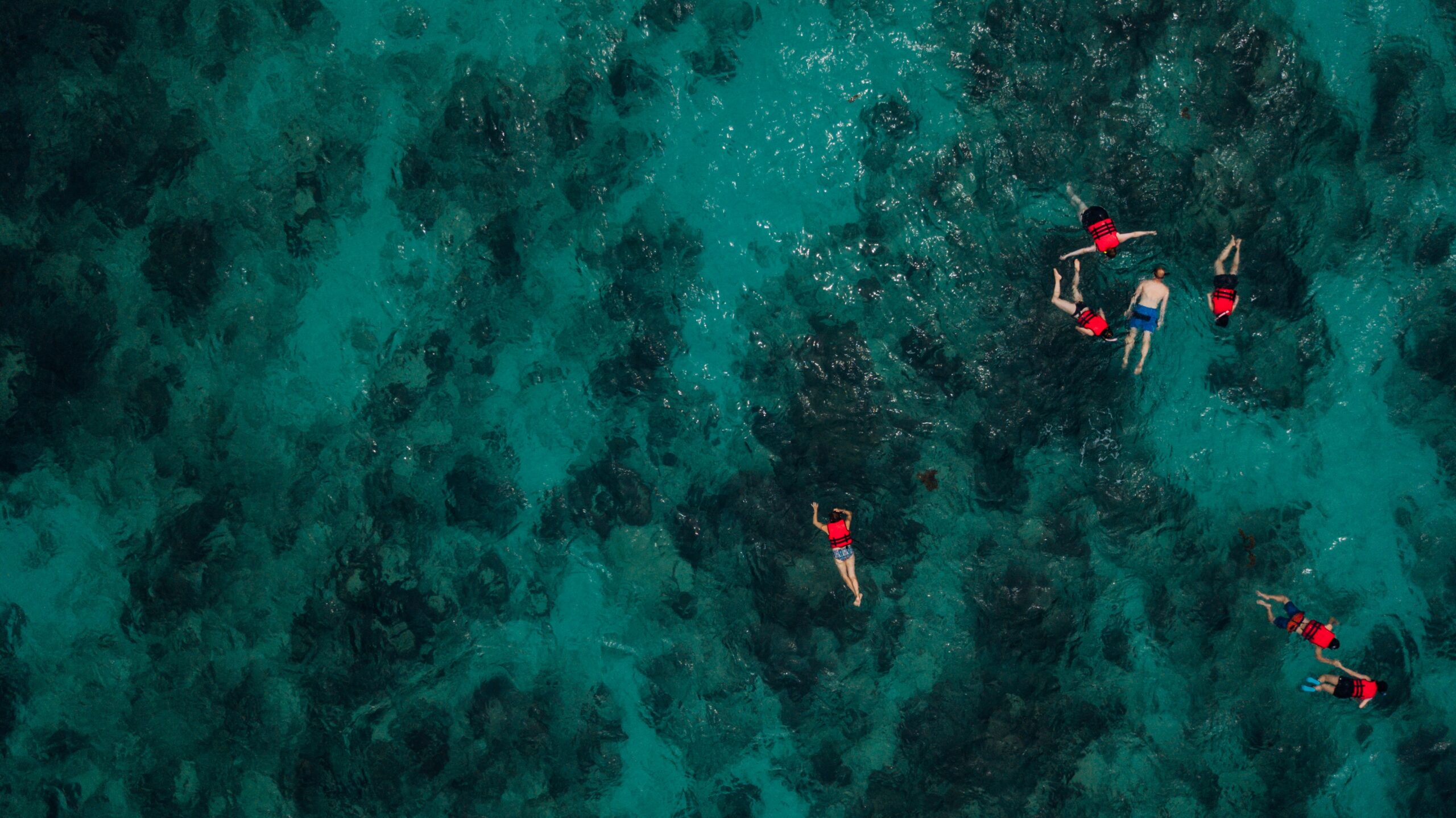 Group of Snorkelers at house reef